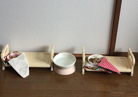 161221_genpika_shokuji3.jpg