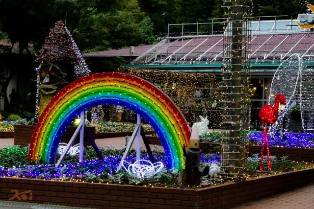 20161022武蔵丘陵森林公園18