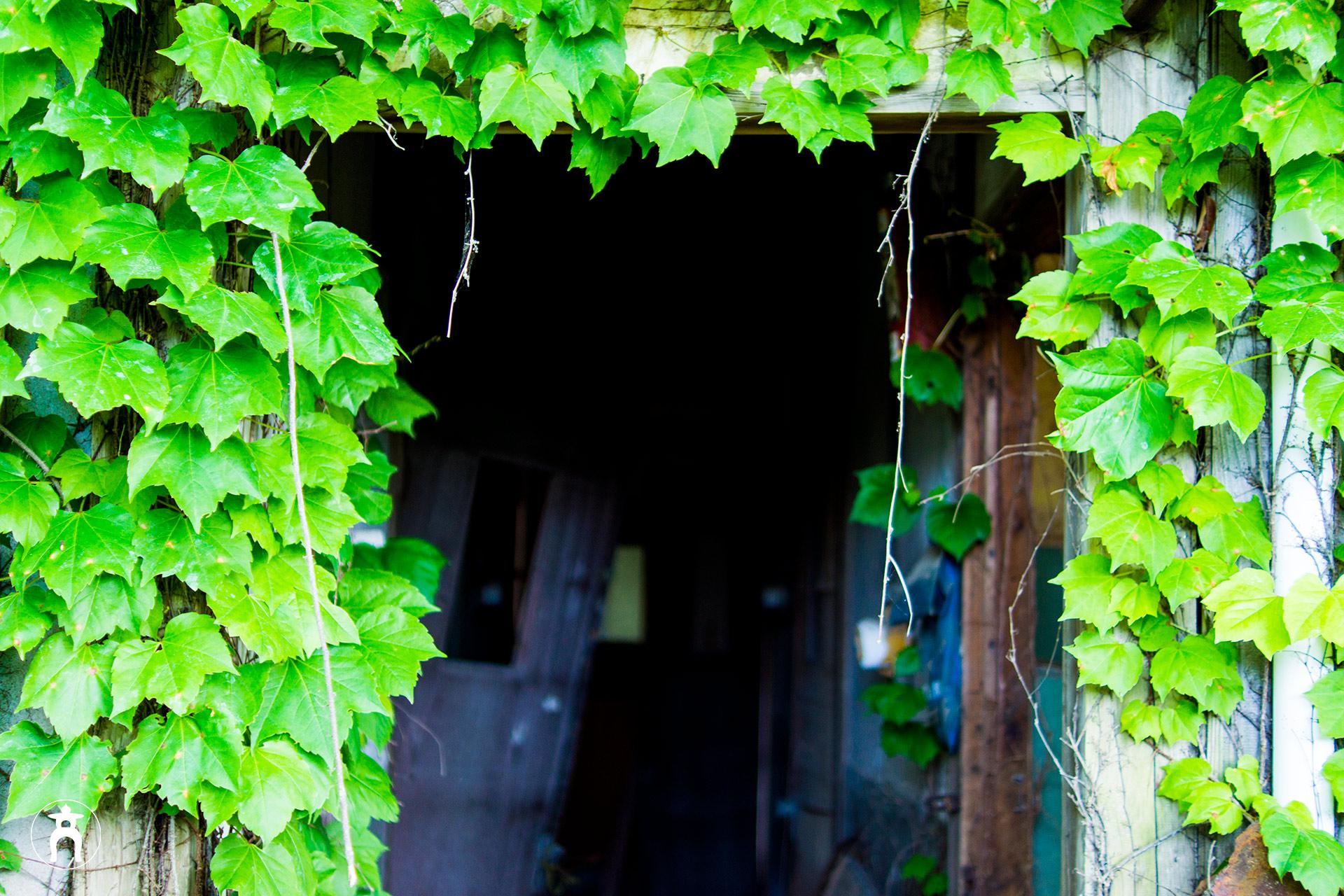 ap_door.jpg