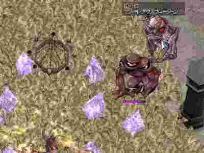 screenOlrun533.jpg