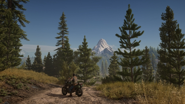 Days Gone PS4 pro 2