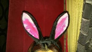 アリス黒ウサギ