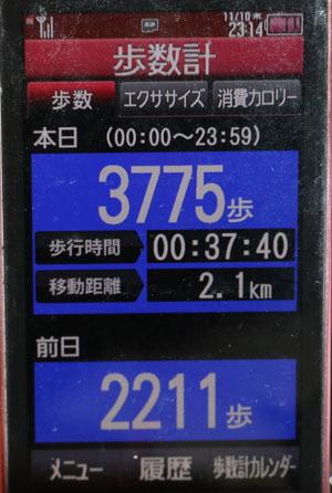 0A1A0015-11-10.jpg