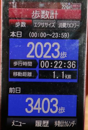 0A1A0049-11-12.jpg