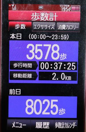 0A1A0150-11-14.jpg