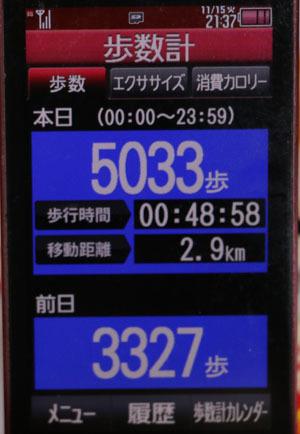 0A1A0166-11-15.jpg