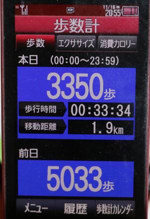 0A1A0221-11-16.jpg