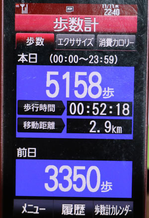 0A1A0230-11-17.jpg