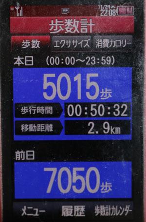 0A1A1813-11-24.jpg