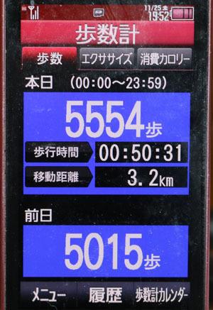0A1A1825-11-25.jpg