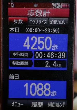 0A1A1863-11-28.jpg