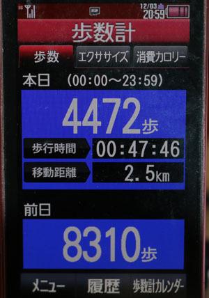 0A1A2519-12-03.jpg