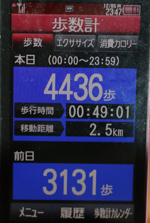 0A1A2574-12-05.jpg