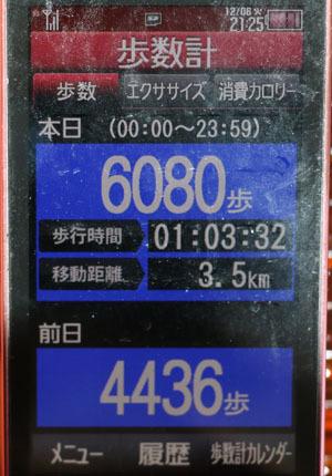 0A1A2590-12-06.jpg