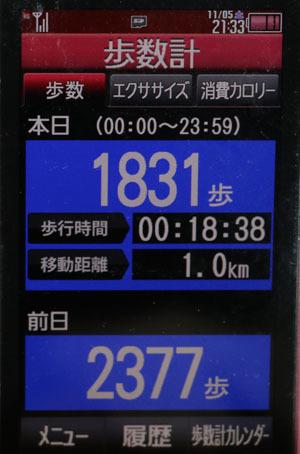 0A1A8813-11-05.jpg