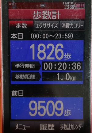 0A1A9967-11-07.jpg