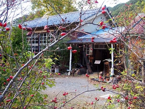 mizugaki-20161103-27s.jpg