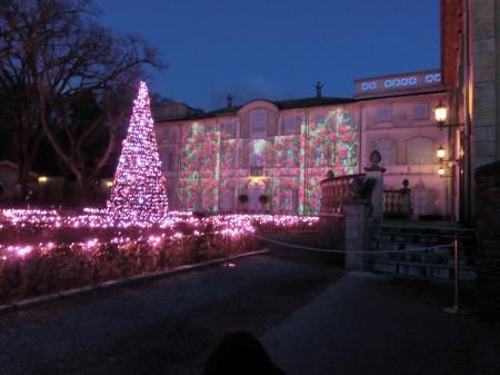星の王子さまミュージアム クリスマス3