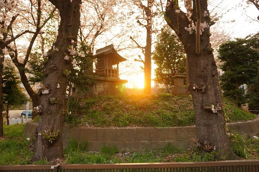 06 登戸富士塚古墳東から