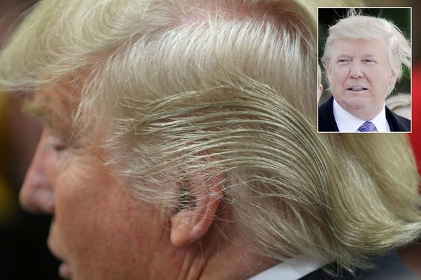 Donald-Trump-Hair-Main.jpg