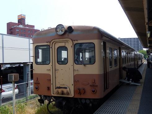 DSCN5243.jpg