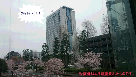 DSC_0816_1.jpg