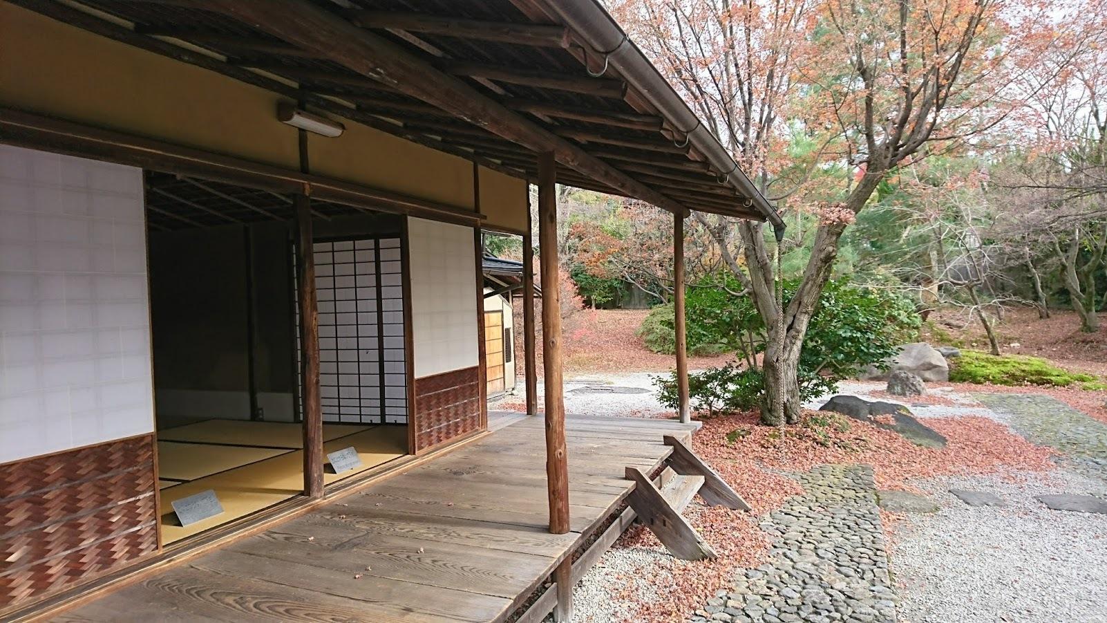 kyokokubi3008.jpg