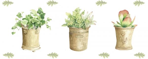 植木鉢とグリーン