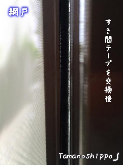 網戸(サッシ)と窓ガラスのすき間(修理後)すき間テープを貼ったあと