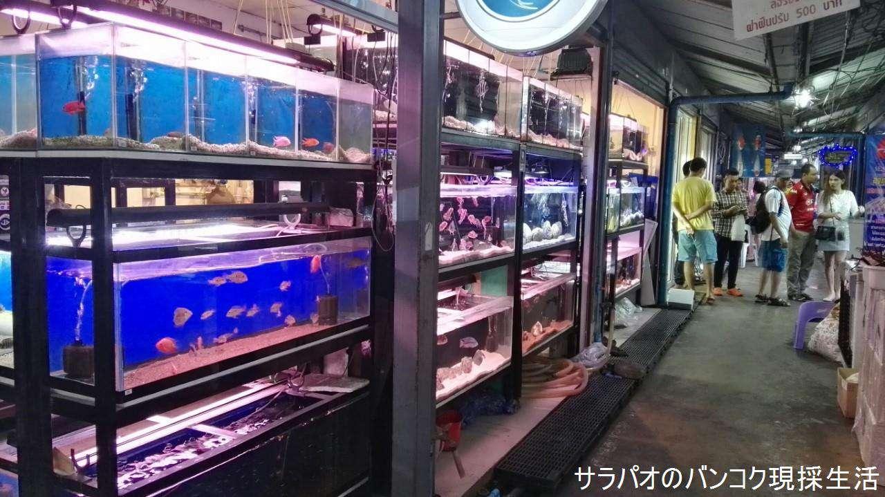 ChatuchakWeekendMarket_07.jpg