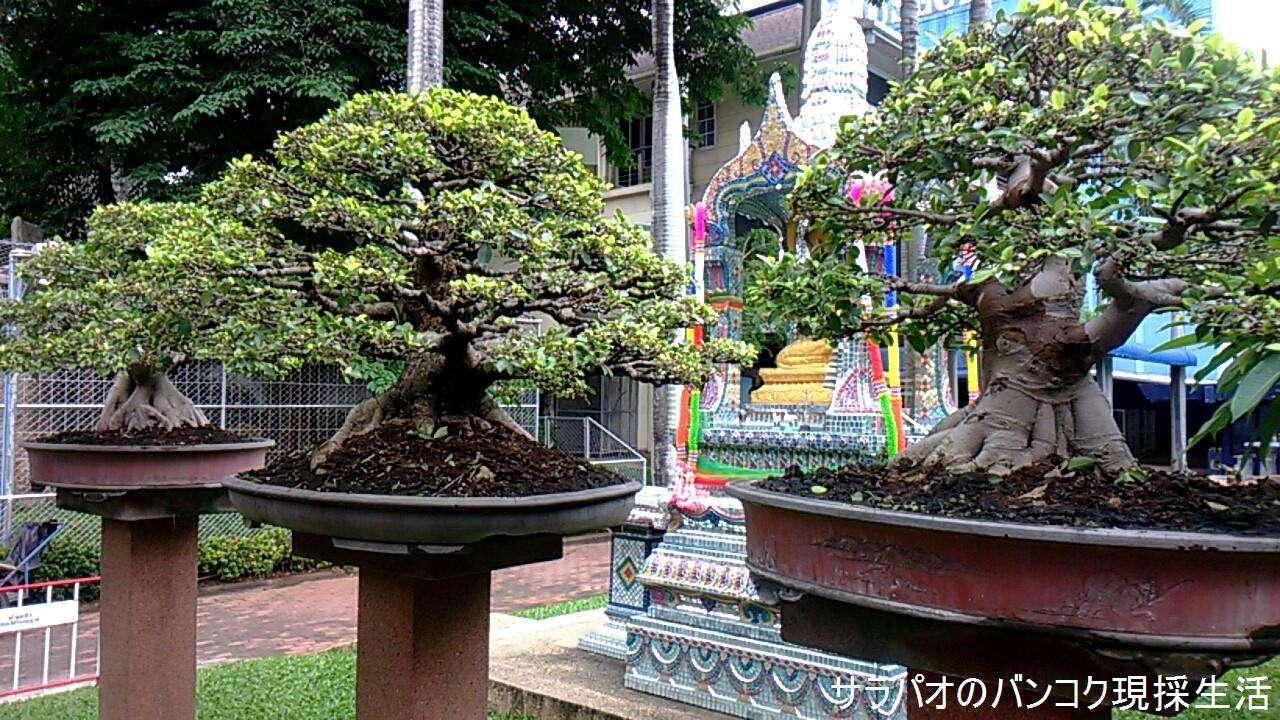 ChokchaiMuseum_12.jpg