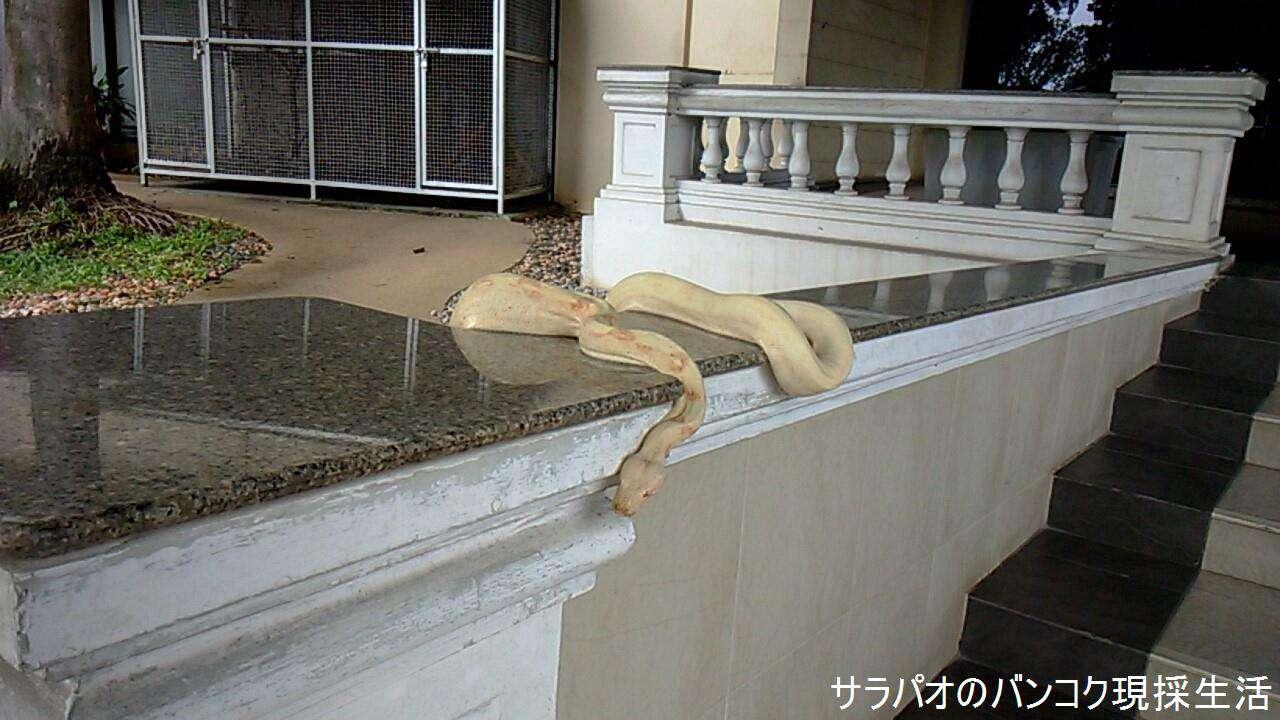 ChokchaiMuseum_16.jpg
