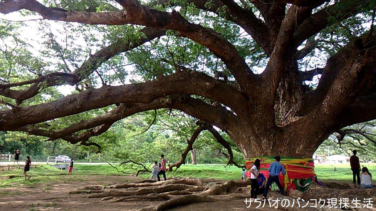 Travel_Kanchanaburi_2_66.jpg