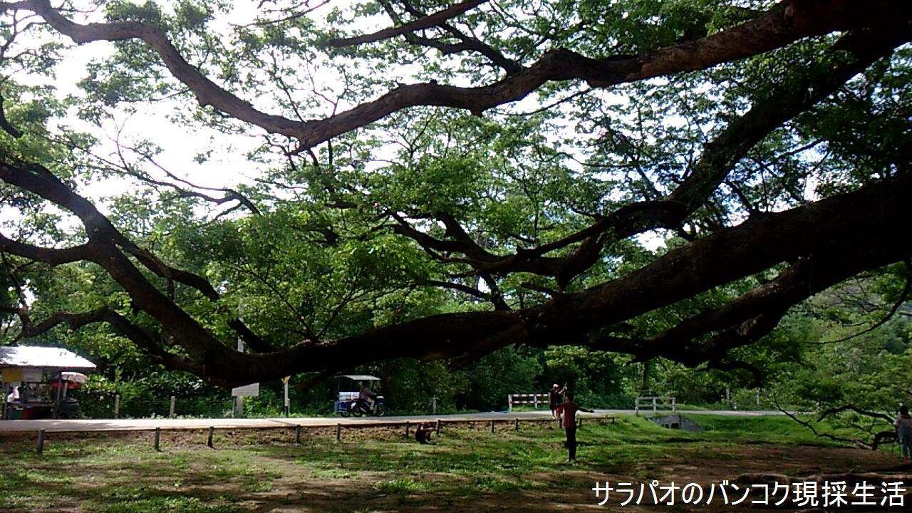 Travel_Kanchanaburi_2_69.jpg