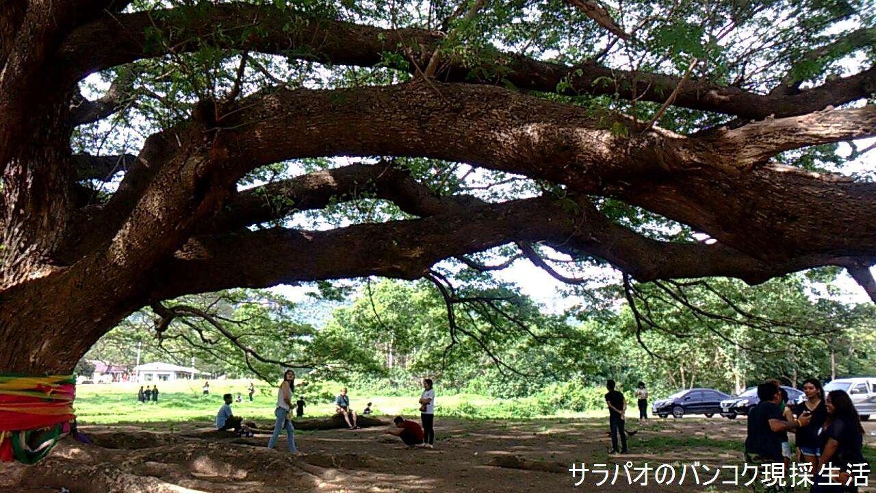 Travel_Kanchanaburi_2_71.jpg