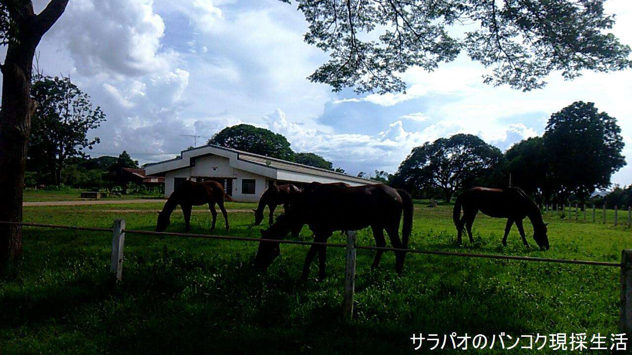 Travel_Kanchanaburi_2_84.jpg