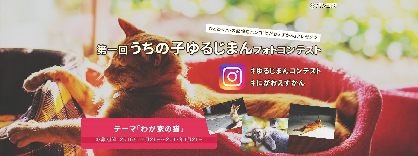 main_20161223090833112.jpg