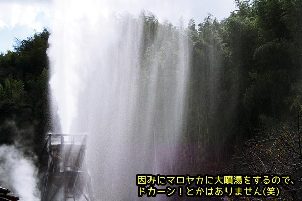 ニャポ旅28 その2 河津 大噴湯