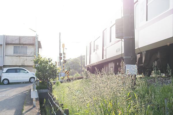 瀬戸線印場付近