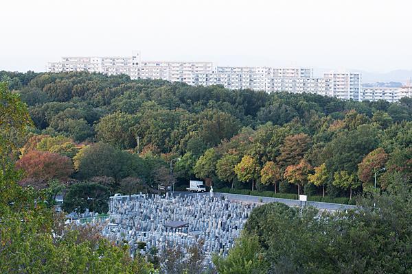 色づき始めた木々と墓地