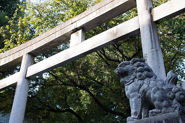 三輪鳥居と狛犬