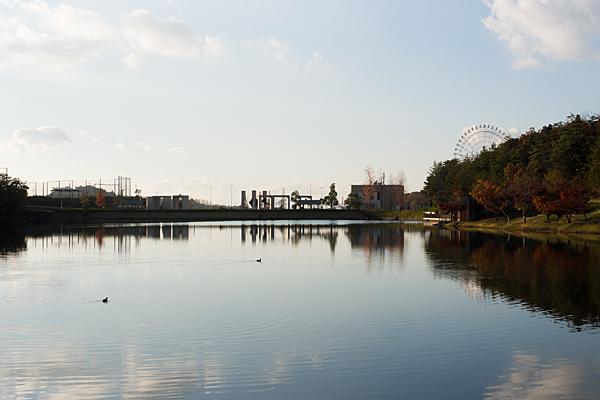 かえで池南側からの風景