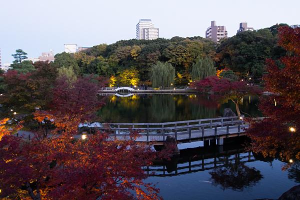 徳川園ライトアップ