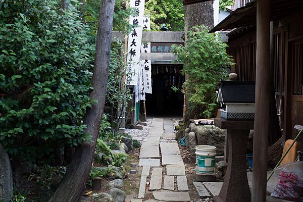 洲崎神社白龍社