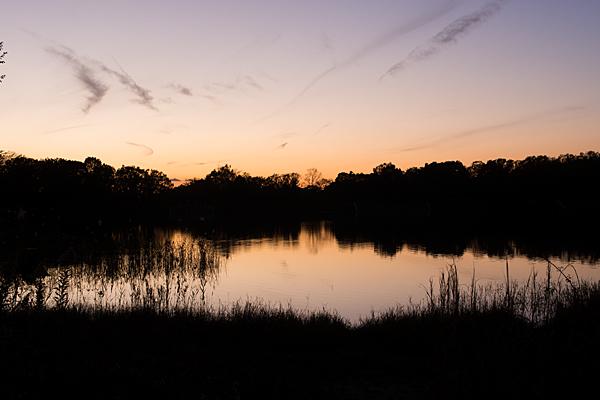 小幡緑地緑ヶ池戻り夕焼け