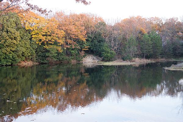 小幡緑地見返ヶ池