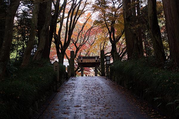 浄源寺入り口