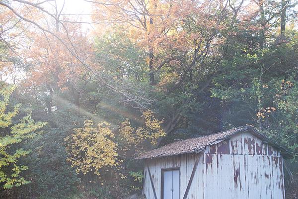納屋と紅葉風景