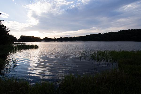 小幡緑地緑ヶ池