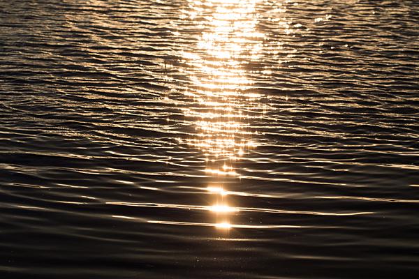 西日に照らされる水面